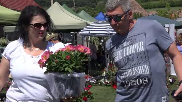 Târg dedicat florilor, în Mureș. Ce plante frumos mirositoare se caută anul acesta
