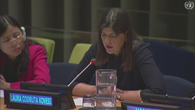 Laura Codruța Kovesi, ONU