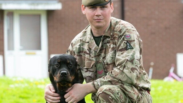 Surpriza uriaşă pe care i-a făcut-o unui militar câinele său. Omul s-a îmbogăţit