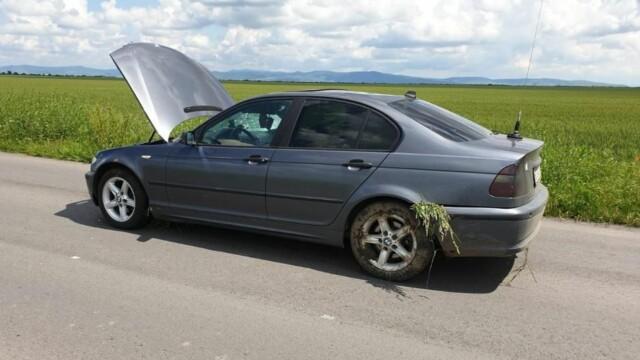 Trei biciclişti loviţi de maşini în jumătate de oră în Arad. Unul a fost decapitat - Imaginea 5
