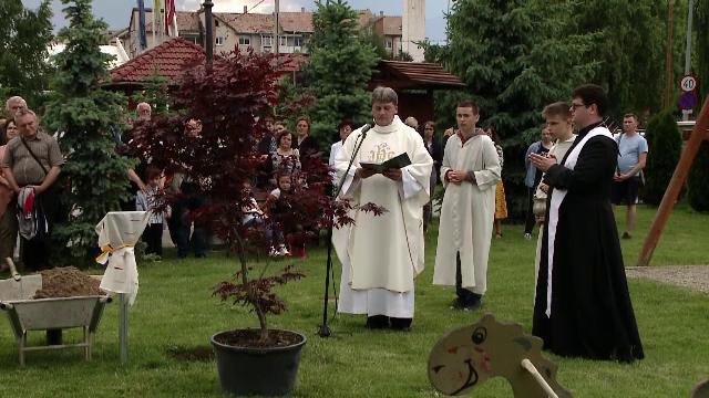 Pădurea din Transilvania creată special pentru Papa Francisc. \