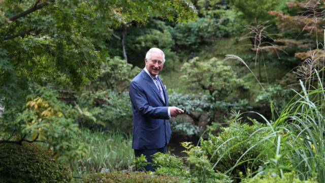 Prințul Charles le cere britanicilor să iasă pe câmp și să ajute fermierii să strângă recolta