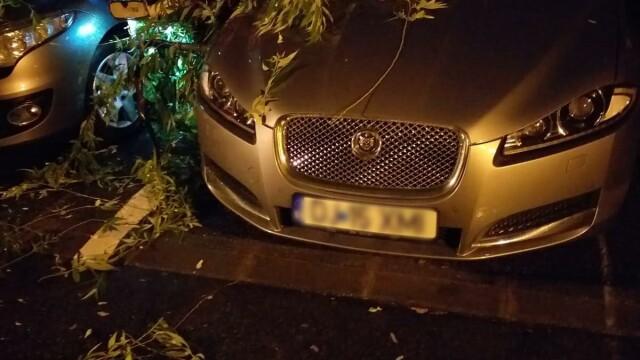 GALERIE FOTO. Furtuna a făcut ravagii în București și alte opt judeţe - Imaginea 4