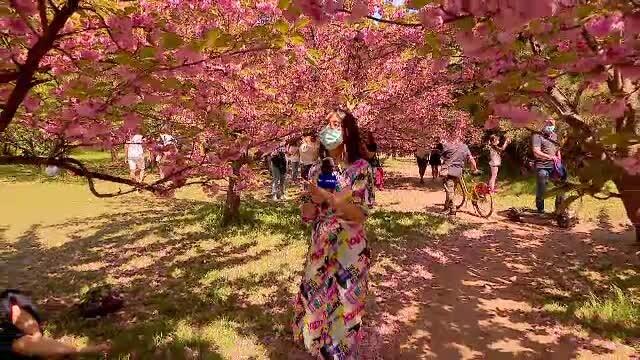 Românii s-au răsfățat la iarbă verde, între copacii în floare, într-o zi de Paște cu temperaturi de vară