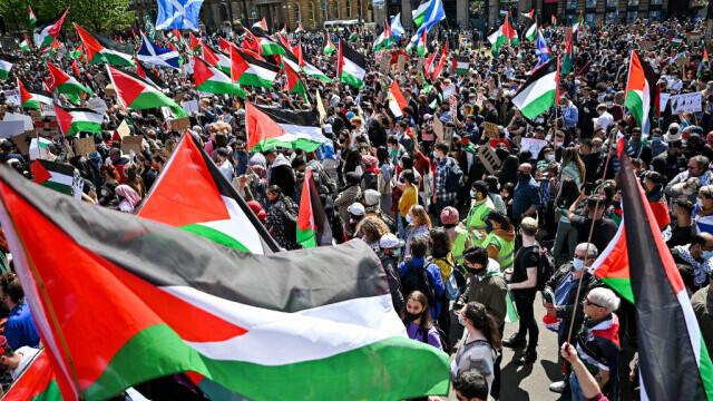 manifestații