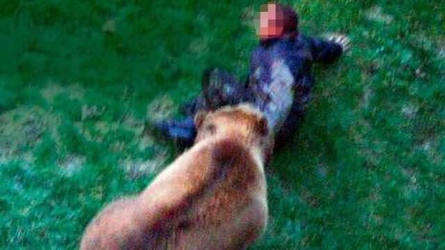 VIDEO SOCANT! Mutilat de un urs, dupa ce a sarit in tarcul animalului! - Imaginea 2