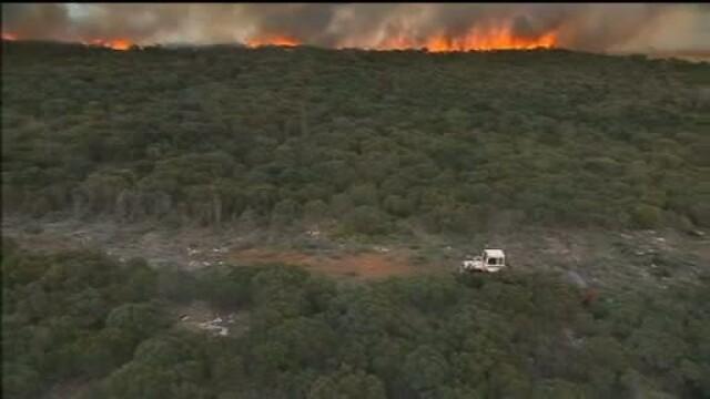 Incendiile de vegetatie fac prapad in sudul Australiei. Flacarile inainteaza spre zonele populate