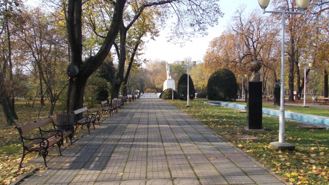 parcul central timisoara