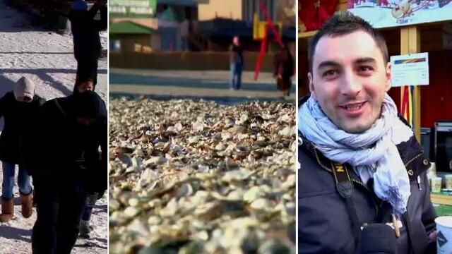 Ultima zi de toamna: Zapada in varf de munte, lume pe plaja la mare si targ de Craciun la Sibiu