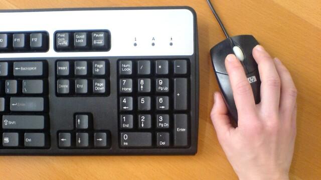 mouse si tastatura
