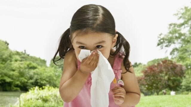 Alternativa la antibiotice care ne poate scapa de virozele de sezon. Nu afecteaza flora intestinala si creste imunitatea