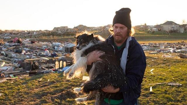Povestea unei regasiri. Si-a salvat cainele pe care il credea mort de sub daramaturi, dupa o zi - Imaginea 1