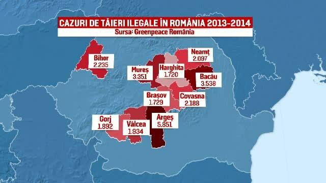 Comisia Europeana pune presiune pe Romania sa-si salveze padurile. Anual dispar 8,8 milioane de metri cubi de lemn