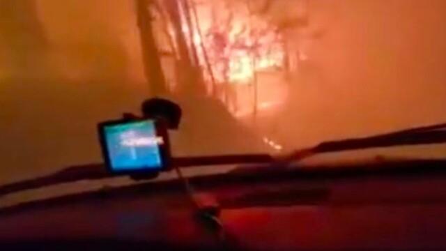 Imaginile terifiante surprinse de un sofer american: Cum a reusit sa scape cu masina dintr-un incendiu de vegetatie. VIDEO