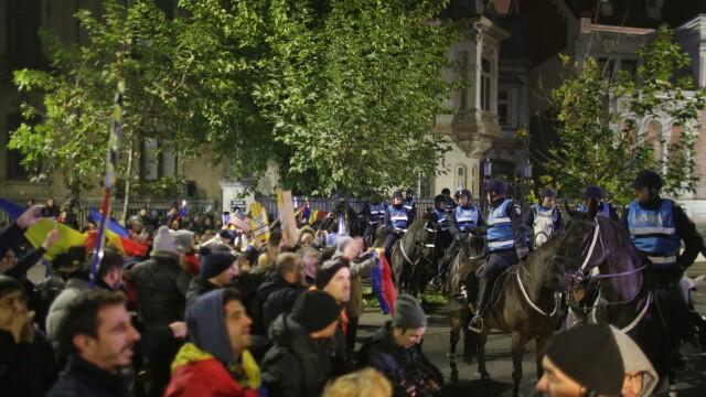 Filmul protestelor din București. Cai stăpâniți cu greu de jandarmi și posibil atac țintit pe Facebook