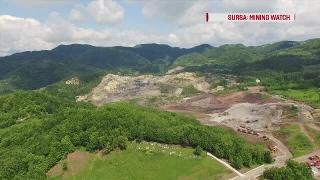 Pădure din Hunedoara, în pericol să dispară. Ce ar putea apărea pe o suprafață de 100 de terenuri de fotbal