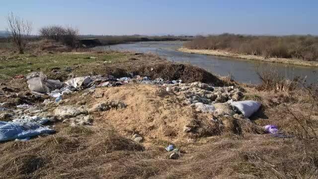 Imagini revoltătoare pe râul Mureș. Mesajul unor ecologiști care luptă să reducă poluarea