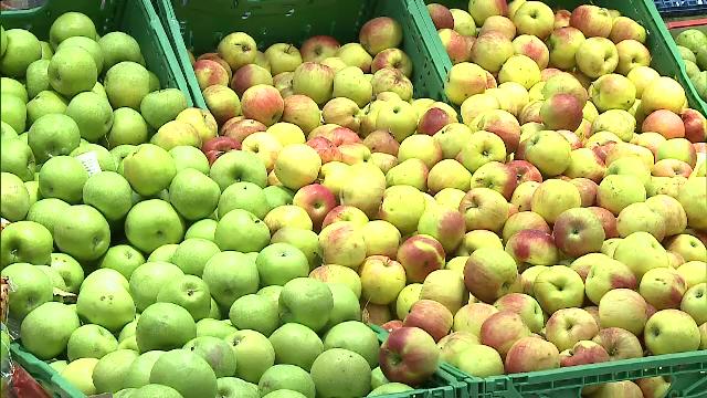 Cât de sănătoase sunt de fapt merele românești