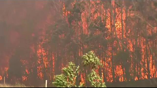 Australia, în flăcări. Mai mulți morți și alti zeci de răniți în urma incendiilor