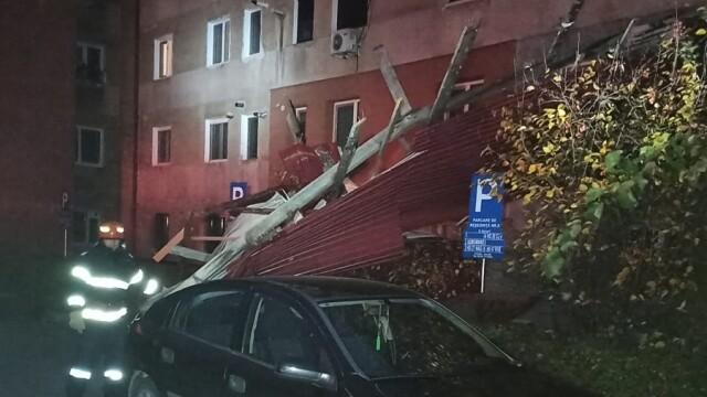 Furtuna in Hunedoara - 2