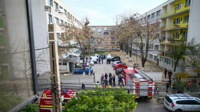Primele rezultate în ancheta deceselor de la Timișoara, după o dezinsecție. Sute de oameni, evacuați - Imaginea 4