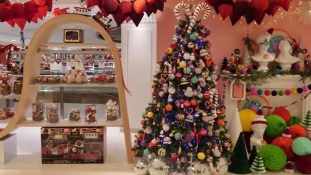 Crăciun 2020. Care sunt tendințele de anul acesta pentru brazii de Crăciun