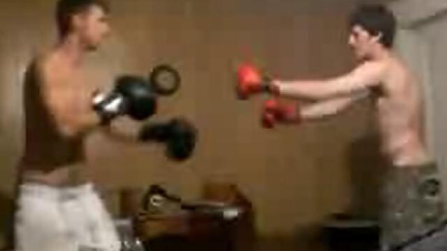 K.O. pe covor! Asta seara ne batem in sufragerie! VEZI VIDEO - Imaginea 2
