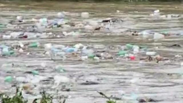 poluare, ecologie
