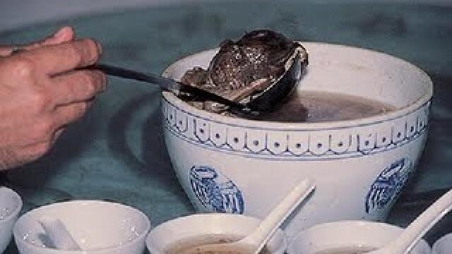 FOTOGRAFII SOCANTE! Supa de fetus uman, delicatesa pentru bogatanii chinezi - Imaginea 6
