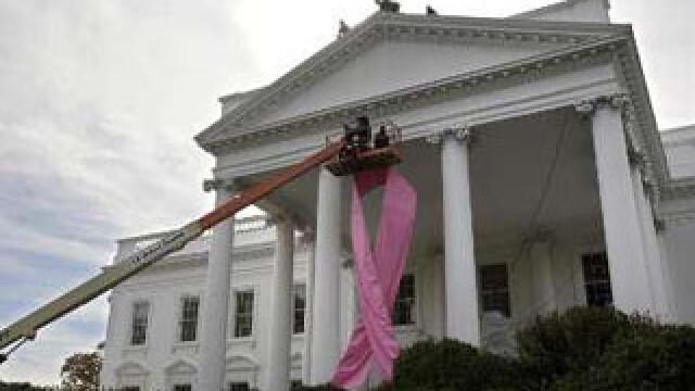 Casa Alba - panglica roz