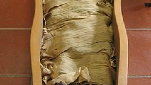 Experiment in premiera: un barbat a fost mumificat exact ca Tutankhamon acum peste 3000 de ani