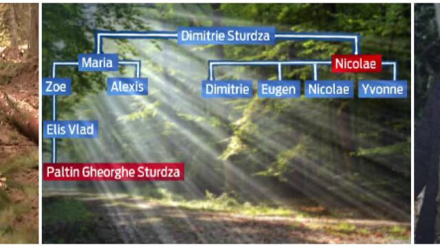 Schema prin care padurile Romaniei sunt retrocedate ilegal si RASE. Alex Dima: \