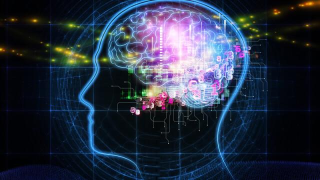 creier, activitate cerebrala