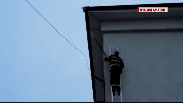 Imagini emotionante in Tecuci. Pompierii au salvat un porumbel prins de doua zile in acoperisul unei scoli