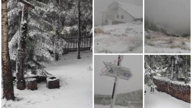 Inca este toamna, dar nordul Romaniei arata ca de Craciun. FOTO si VIDEO cu prima ninsoare din acest sezon