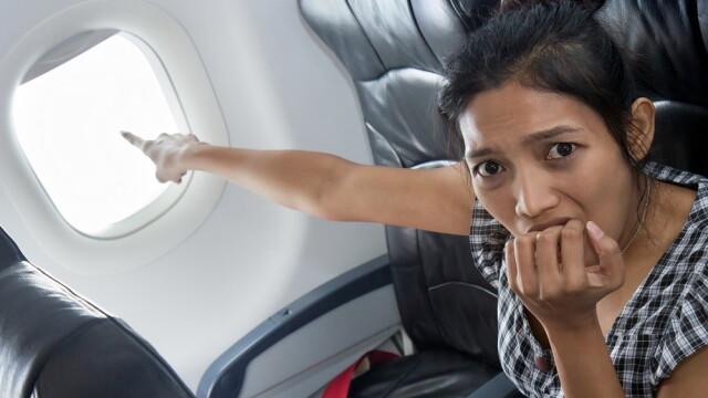 Panica la bordul unui avion American Airlines din cauza unui roi de albine care si-au urmat matca si au intrat in aripa. FOTO