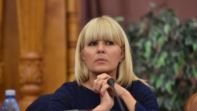 Comisia juridica a Camerei Deputatilor a aprobat cererea de incuviintare a urmaririi penale a Elenei Udrea