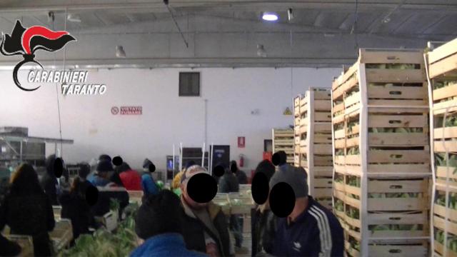 35 de români, exploataţi în Italia pentru 1 euro pe zi. Un compatriot îi \