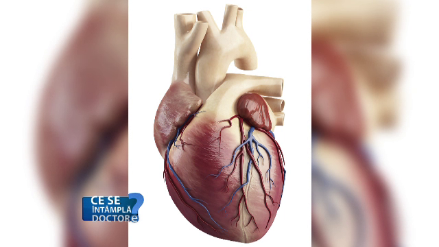 Funcționarea mușchiului cardiac ne arată în ce stare sunt arterele