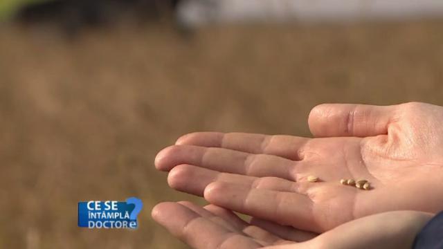 Importanța consumului de orez pentru digestie. Recomandările medicilor