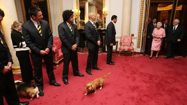 Whisper, ultimul câine corgi al reginei Elisabeta a II-a, a decedat
