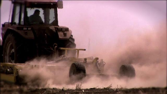 Soia modificată genetic în țară, deși e interzisă. Descoperirea făcută pe o plantație ilegală