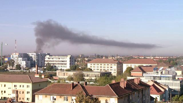Incendiu violent în Timișoara. O magazie cu lemne și unelte a ars complet
