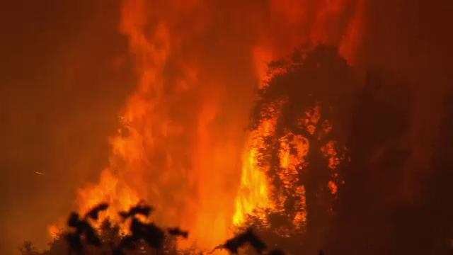 Imagini apocaliptice în California. Incendiile de vegetație au mistuit totul în cale - Imaginea 2