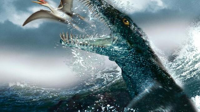 Descoperire fascinantă în Polonia. Cercetătorii confirmă existența monștrilor marini - Imaginea 3