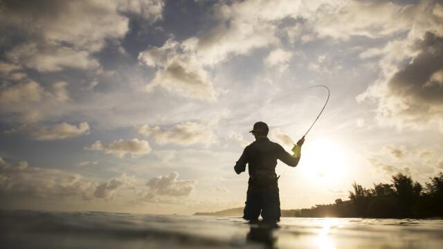 """Descoperire inedită. Creatura peste care au dat pescarii: """"Părea ciudat, cu un singur ochi"""". FOTO"""