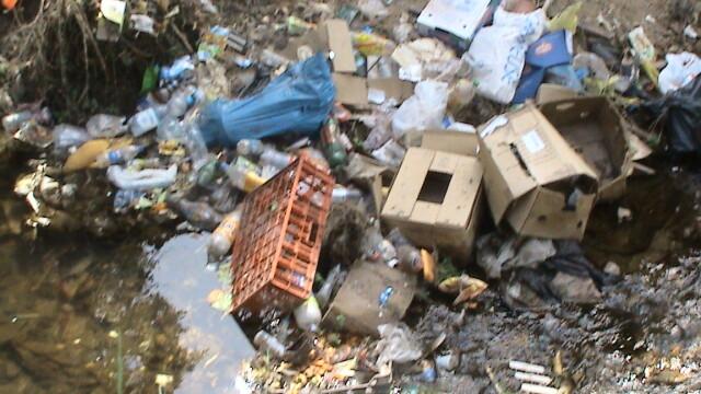 Muntii Dognecei plini de gunoaie! Turistii nu dau doi bani pe ecologie - Imaginea 1