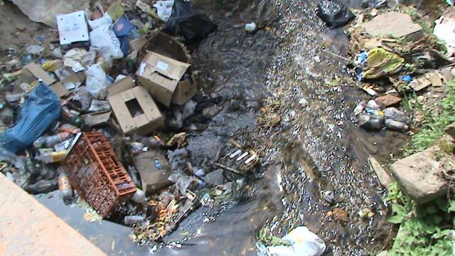 Muntii Dognecei plini de gunoaie! Turistii nu dau doi bani pe ecologie - Imaginea 2