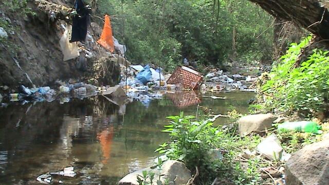 Muntii Dognecei plini de gunoaie! Turistii nu dau doi bani pe ecologie - Imaginea 4