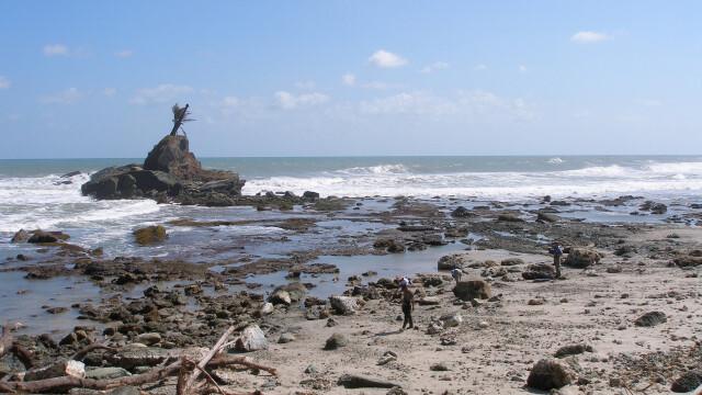 Panica in Pacific, in urma a trei seisme urmate de o alerta de tsunami